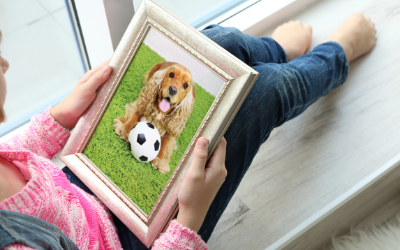 image for World Pet Memorial Day
